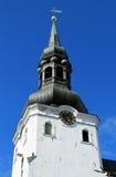 Torn av kupoldomkyrkan Royaltyfria Bilder