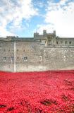 Torn av London med havet av röda vallmo som minns de stupade soldaterna av WWI - 30th Augusti 2014 - London, UK Royaltyfria Bilder