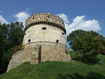 Torn av slotten Arkivbilder