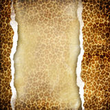 Torn background. Vintage torn background in leopard colors stock photo