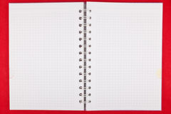 Torn blank lined notebook pages. On red background Stock Photography