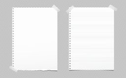 Torn blank and lined white note, notebook paper sheet for text stuck with gray sticky tape on squared background. Torn blank and lined white note, notebook Vector Illustration
