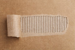 torn cardboard Stock Image