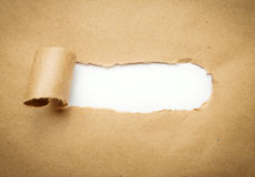 Torn brown paper with blank space. Stock Photos