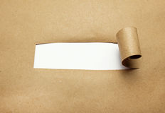 Torn brown paper with blank space. Stock Image