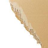 Torn cardboard sheet with place for text. Royalty Free Stock Image