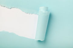Torn colored paper Royalty Free Stock Images