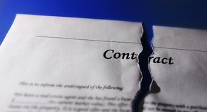 Torn contract. Torn legal contract agreement, on blue stock photography