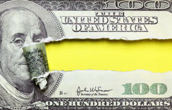Torn dollars Royalty Free Stock Images