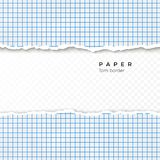 Torn Edge of Squared Paper. Torn Piece of Squared Paper from Notebook. Blank Page Isolated on Transparent Background. Vector royalty free illustration