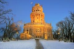 torn för elisabethlook ut Royaltyfri Foto