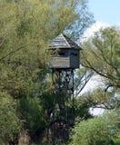 Torn för hålla ögonen på för fågel i Donaudeltan fotografering för bildbyråer