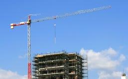 torn för konstruktionskranlokal royaltyfri foto