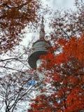 Torn för N Seoul i Sydkorea Royaltyfri Bild