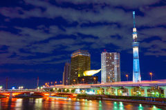 Torn för Tokyo himmelträd Arkivbilder