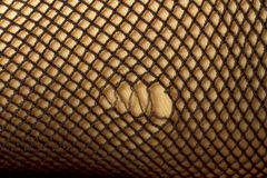 Torn Fishnets Stock Images