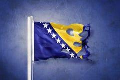 Torn flag of Bosnia and Herzegovina flying against grunge background Royalty Free Stock Photos