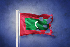 Torn flag of Maldives flying against grunge background Stock Photography