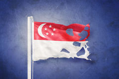 Torn flag of Singapore flying against grunge background Stock Images