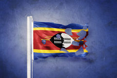 Torn flag of Swaziland flying against grunge background Royalty Free Stock Image