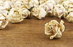 Torn flowers roses. On the oak table Stock Images