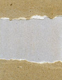 Torn grainy paper Royalty Free Stock Image