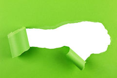 Torn green paper background Royalty Free Stock Photo