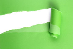 Torn green paper Stock Photography