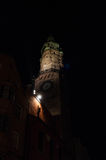 Torn i mörkret Royaltyfri Foto