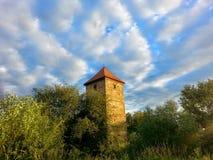 Torn i skog Royaltyfri Fotografi