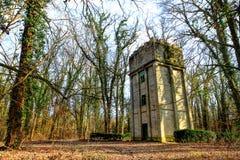 Torn i skogen Arkivfoton