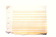 Torn lined computer paper Royalty Free Stock Photo