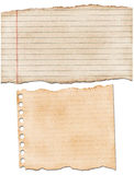 Torn lined paper Stock Image