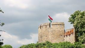 Torn med den ungerska flaggan Pecs stock video