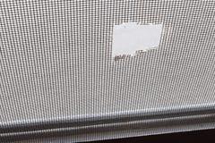 Torn mosquito screen stock photos