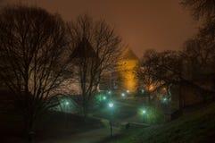 Torn och lyktor av Tallinn den gamla staden Royaltyfria Bilder