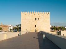 Torn och roman bro i Cordoba, Spanien Royaltyfria Bilder