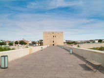 Torn och roman bro i Cordoba, Spanien Royaltyfri Bild