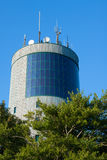 Torn och treetops Royaltyfri Foto
