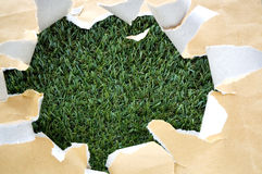 Torn papaer on grass Royalty Free Stock Images