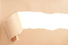 Torn Paper. With space for text showing a white background Stock Photos