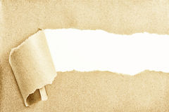 Torn Paper. With space for text showing a white background Royalty Free Stock Photo