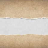 Torn Paper. Abstract for background stock photos