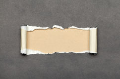Torn paper with beige space for your message Royalty Free Stock Photo