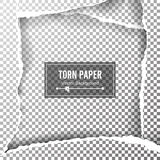 Torn Paper Blank Vector. Ripped Edges With Space For Text. Torn Page Banner For Web And Print. Sale Promo, Advertising, Presentati Stock Image