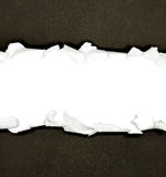 Torn paper borders on white Royalty Free Stock Images