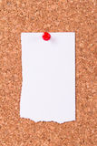 Torn Paper on Cork Board Royalty Free Stock Images