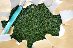 Torn paper with cutter on grass Stock Photos