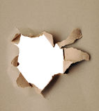 Torn paper - gray cardboard Stock Image