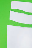 Torn paper on green background Stock Photography